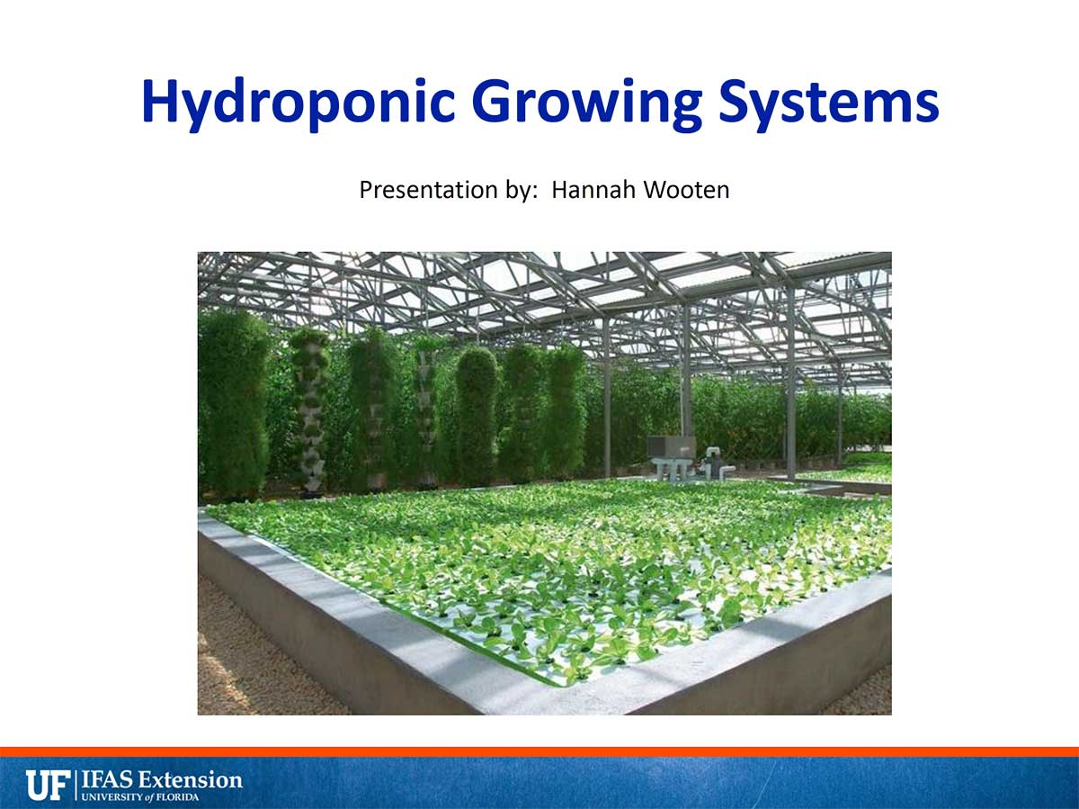 Hydroponic Growing Systems Powerpoint Cover