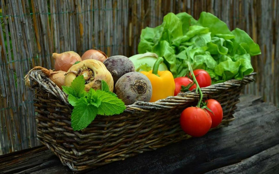 Homeowner Vegetable Gardening 201: Beyond The Basics